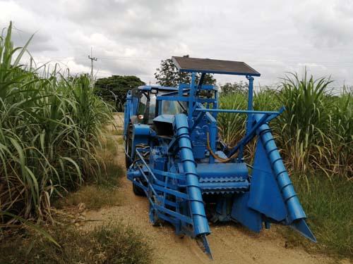 harvester sugarcane india tractor