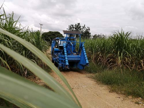 Tractor F17 Cane harvester