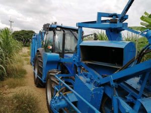 F17 Sugarcane harvester with blower