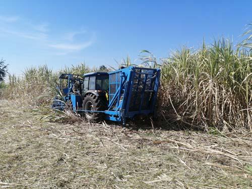 Tractor sugarcane harvester Model F17